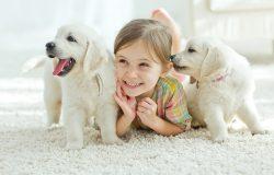 Shutterstock 374801014